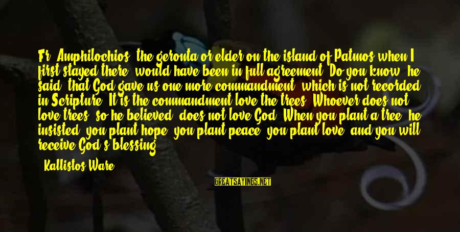 Plant A Tree Love Sayings By Kallistos Ware: Fr. Amphilochios, the geronta or elder on the island of Patmos when I first stayed