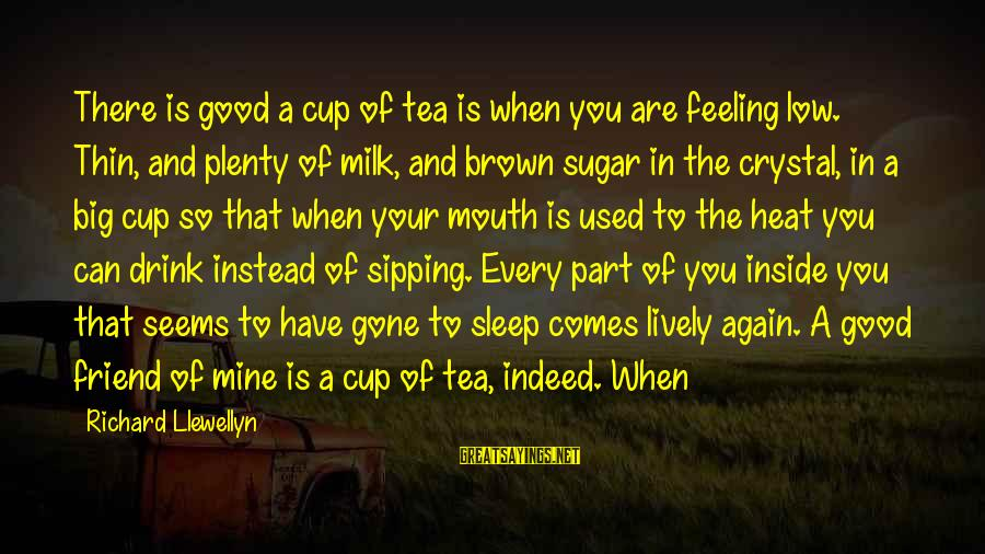Plenty Of Sleep Sayings By Richard Llewellyn: There is good a cup of tea is when you are feeling low. Thin, and