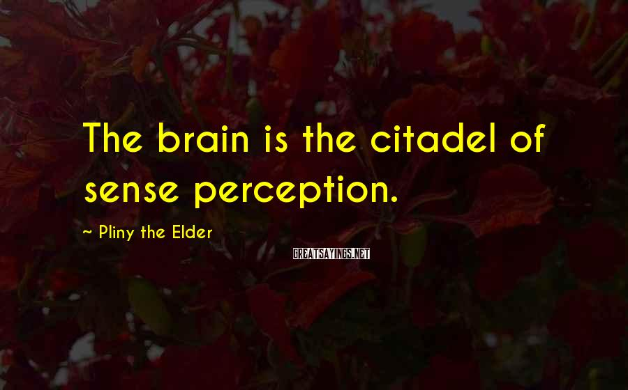 Pliny The Elder Sayings: The brain is the citadel of sense perception.