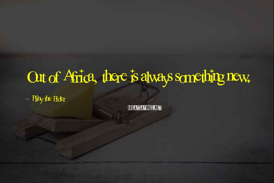Pliny The Elder Sayings: Out of Africa, there is always something new.