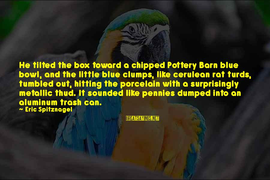 Pottery Barn Sayings By Eric Spitznagel: He tilted the box toward a chipped Pottery Barn blue bowl, and the little blue