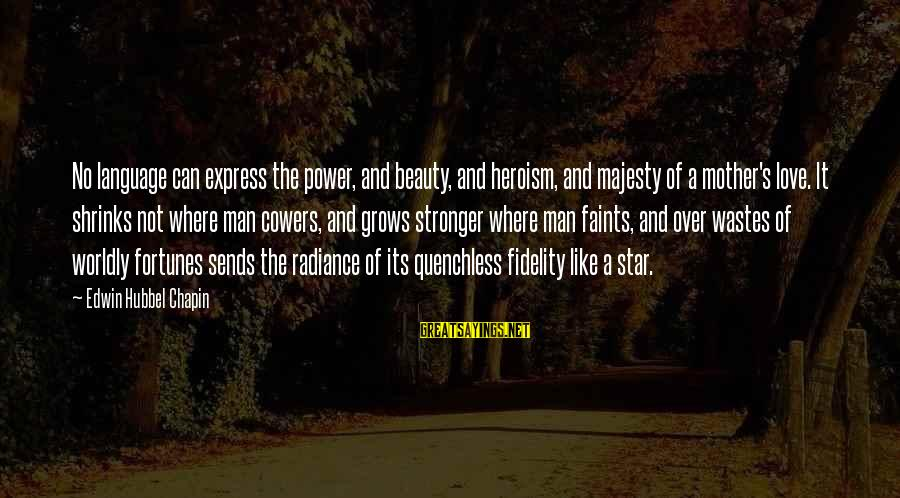 Power And Language Sayings By Edwin Hubbel Chapin: No language can express the power, and beauty, and heroism, and majesty of a mother's