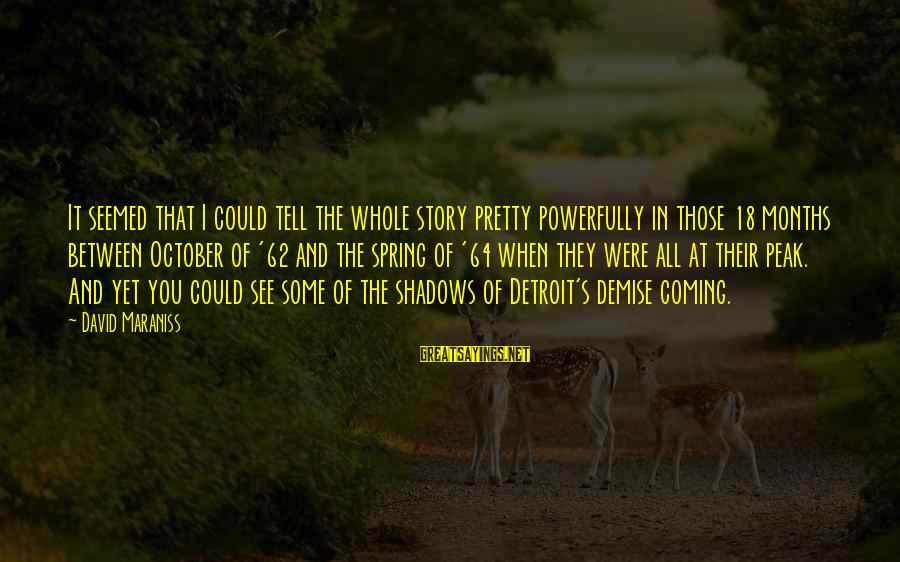 Powerfully Sayings By David Maraniss: It seemed that I could tell the whole story pretty powerfully in those 18 months