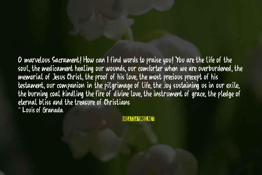 Praise Jesus Sayings By Louis Of Granada: O marvelous Sacrament! How can I find words to praise you! You are the life