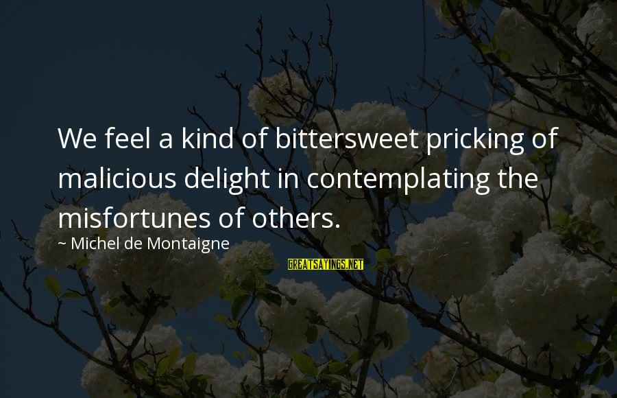 Pricking Sayings By Michel De Montaigne: We feel a kind of bittersweet pricking of malicious delight in contemplating the misfortunes of