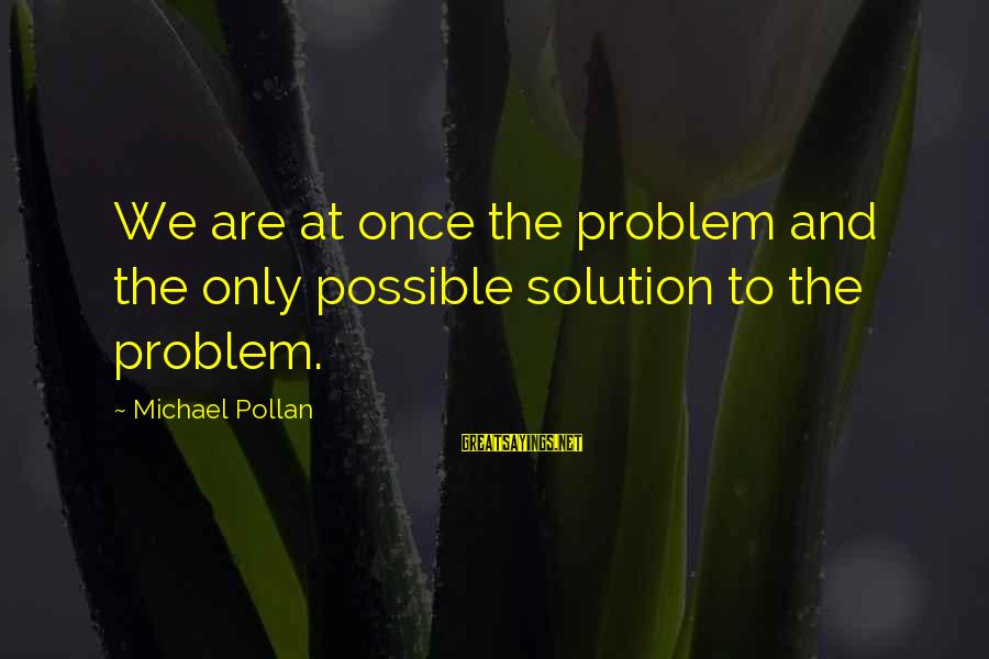 Problem And Solution Sayings By Michael Pollan: We are at once the problem and the only possible solution to the problem.