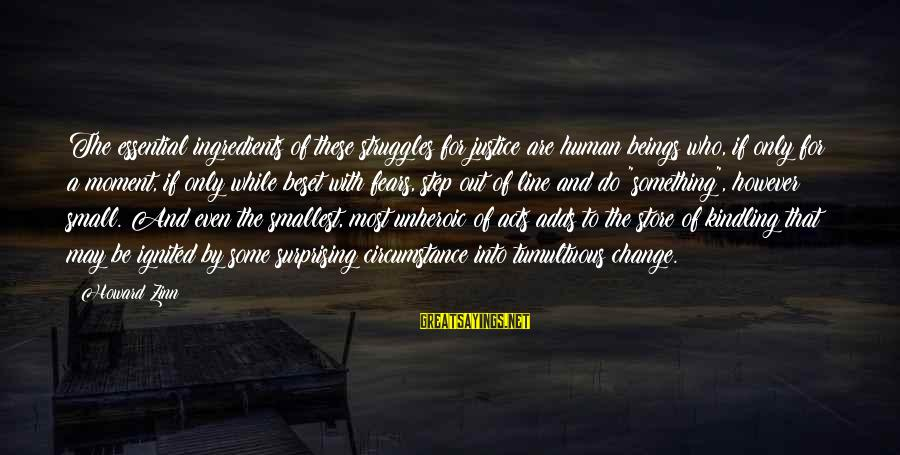 Provoking Change Sayings By Howard Zinn: The essential ingredients of these struggles for justice are human beings who, if only for