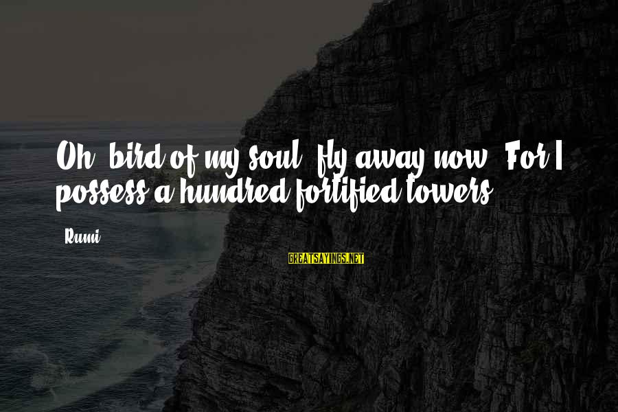 Pseudomystical Sayings By Rumi: Oh, bird of my soul, fly away now, For I possess a hundred fortified towers.