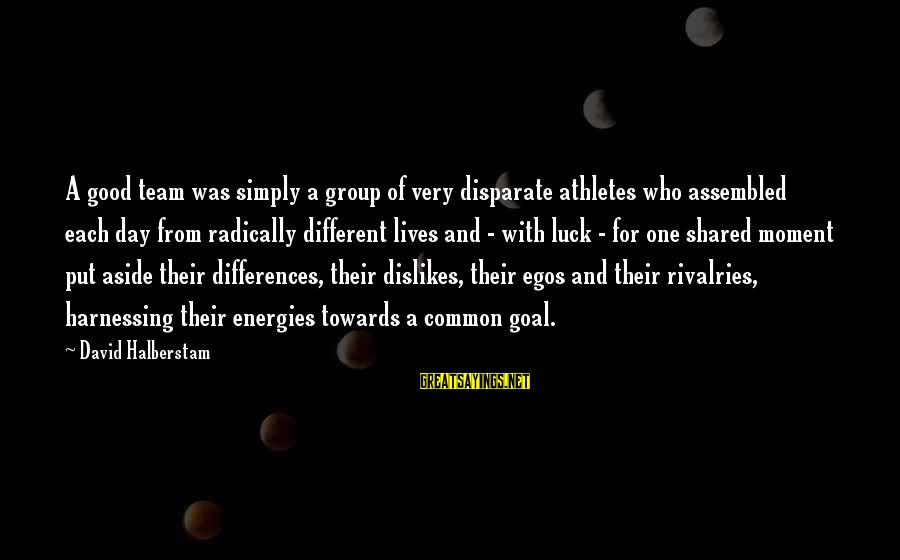 Put Aside Differences Sayings By David Halberstam: A good team was simply a group of very disparate athletes who assembled each day