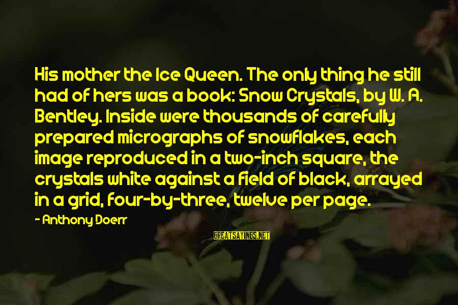 Queen Mother Sayings By Anthony Doerr: His mother the Ice Queen. The only thing he still had of hers was a