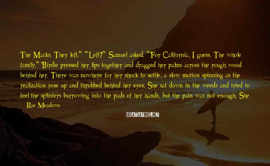 """Rae Meadows Sayings: The Macks. They left."""" """"Left?"""" Samuel asked. """"For California, I guess. The whole family."""" Birdie"""