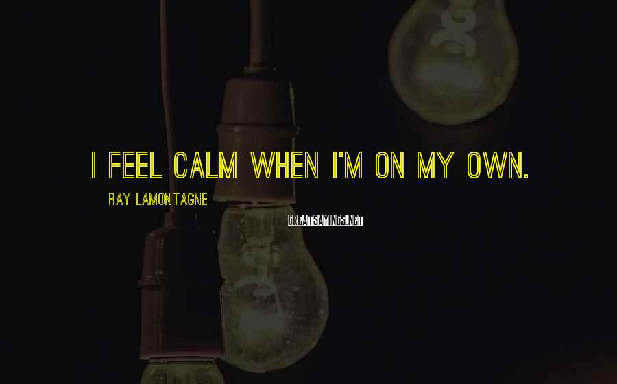 Ray Lamontagne Sayings: I feel calm when I'm on my own.