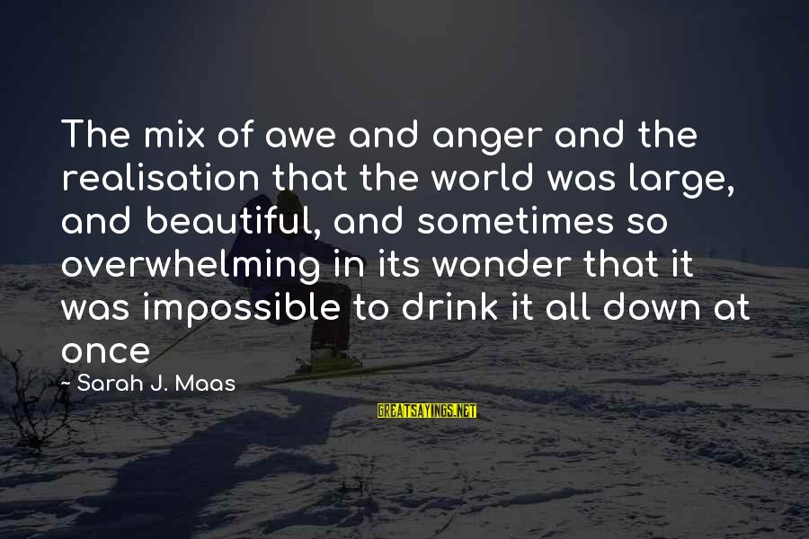 Realisation Sayings By Sarah J. Maas: The mix of awe and anger and the realisation that the world was large, and