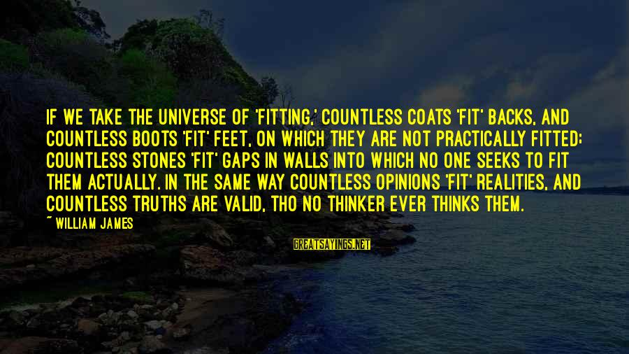 Reality'transcending Sayings By William James: If we take the universe of 'fitting,' countless coats 'fit' backs, and countless boots 'fit'