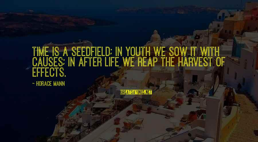 Reap Harvest Sayings By Horace Mann: Time is a seedfield; in youth we sow it with causes; in after life we