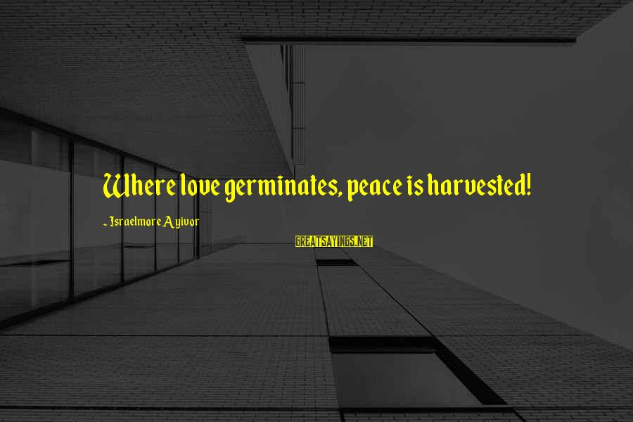 Reap Harvest Sayings By Israelmore Ayivor: Where love germinates, peace is harvested!