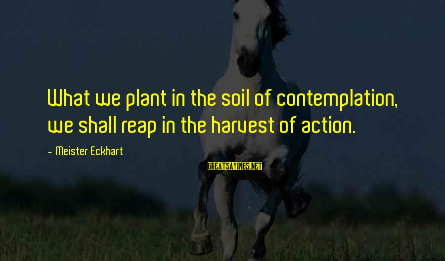 Reap Harvest Sayings By Meister Eckhart: What we plant in the soil of contemplation, we shall reap in the harvest of