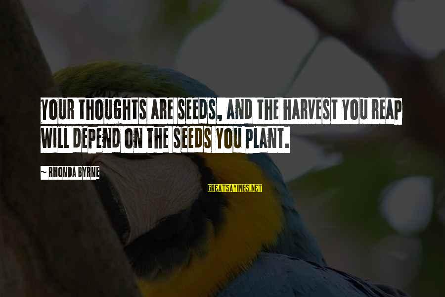 Reap Harvest Sayings By Rhonda Byrne: Your thoughts are seeds, and the harvest you reap will depend on the seeds you