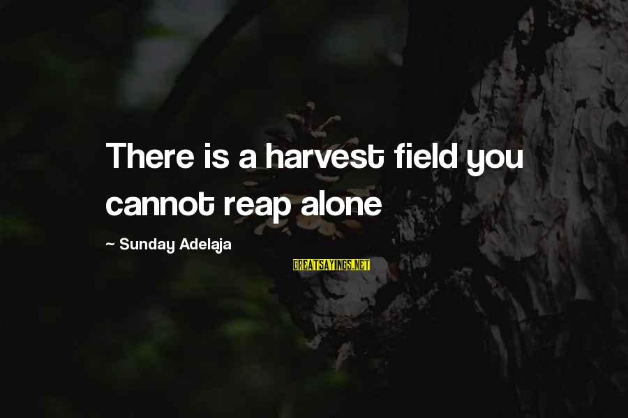Reap Harvest Sayings By Sunday Adelaja: There is a harvest field you cannot reap alone