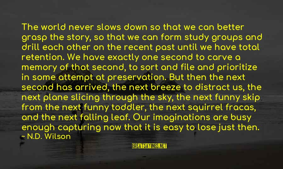 Recent Past Sayings By N.D. Wilson: The world never slows down so that we can better grasp the story, so that