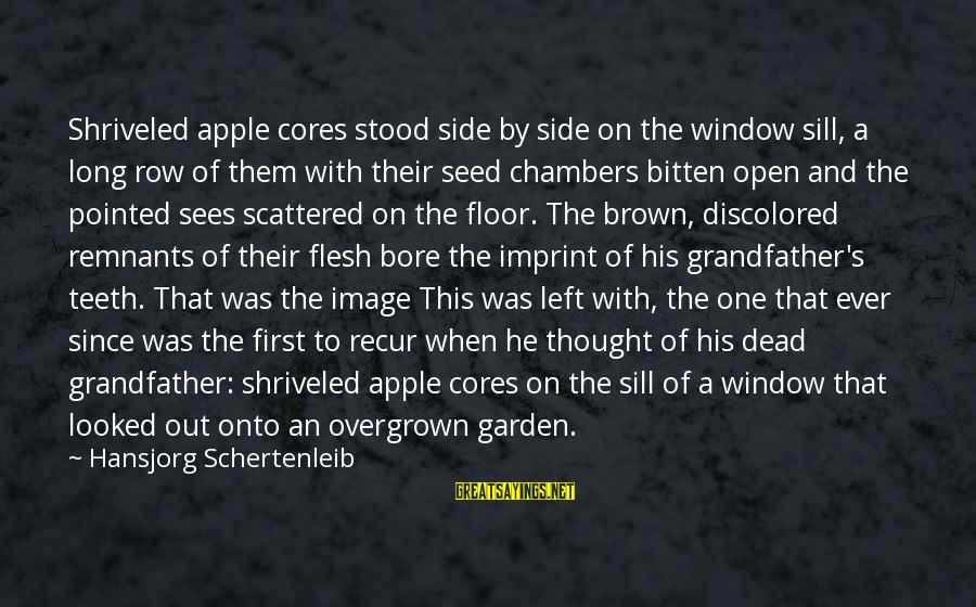 Recur Sayings By Hansjorg Schertenleib: Shriveled apple cores stood side by side on the window sill, a long row of
