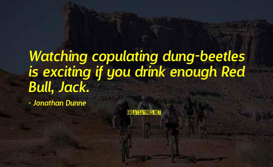Red Hearts Sayings By Jonathan Dunne: Watching copulating dung-beetles is exciting if you drink enough Red Bull, Jack.