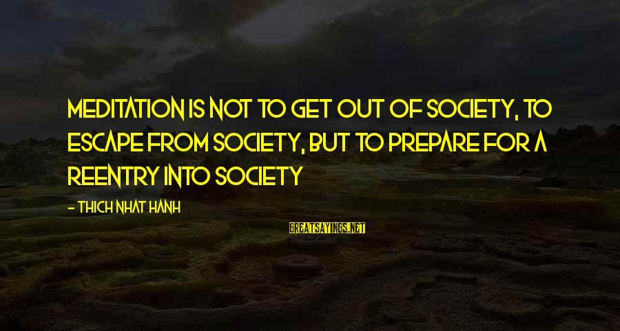 Reentry Sayings By Thich Nhat Hanh: MEDITATION is not to get out of society, to escape from society, but to prepare