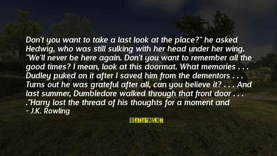 """Remember Good Times Sayings By J.K. Rowling: Don't you want to take a last look at the place?"""" he asked Hedwig, who"""