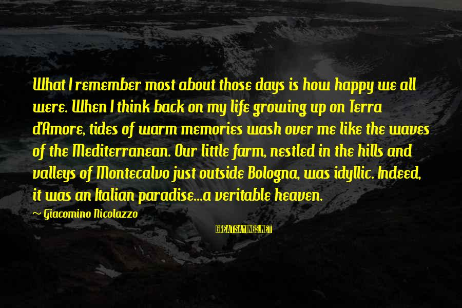 Remember When We Were Happy Sayings By Giacomino Nicolazzo: What I remember most about those days is how happy we all were. When I