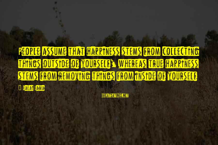 Removing Sayings By Dalai Lama: People assume that happiness stems from collecting things outside of yourself, whereas true happiness stems