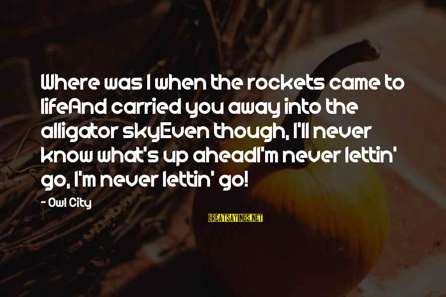 Repugnances Sayings By Owl City: Where was I when the rockets came to lifeAnd carried you away into the alligator