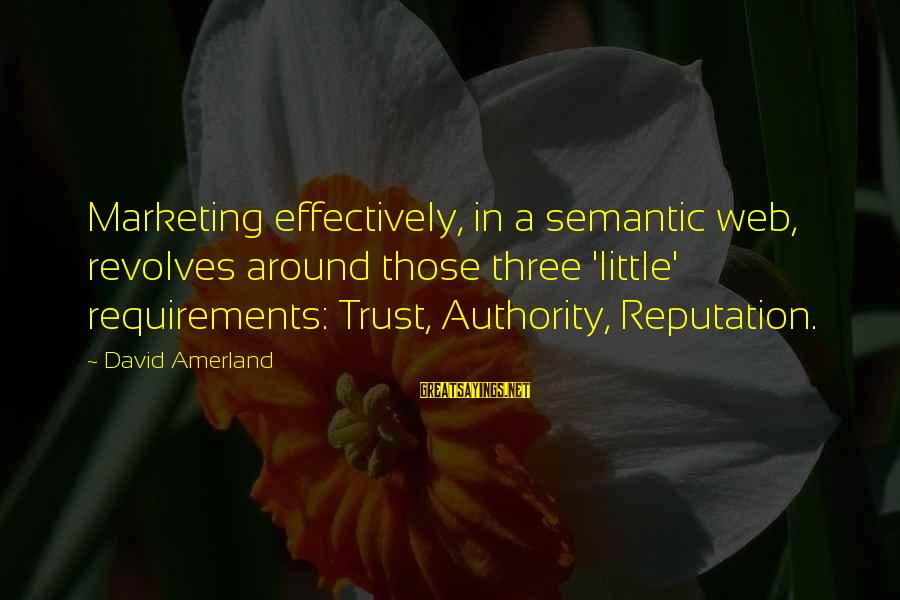 Requirements Sayings By David Amerland: Marketing effectively, in a semantic web, revolves around those three 'little' requirements: Trust, Authority, Reputation.