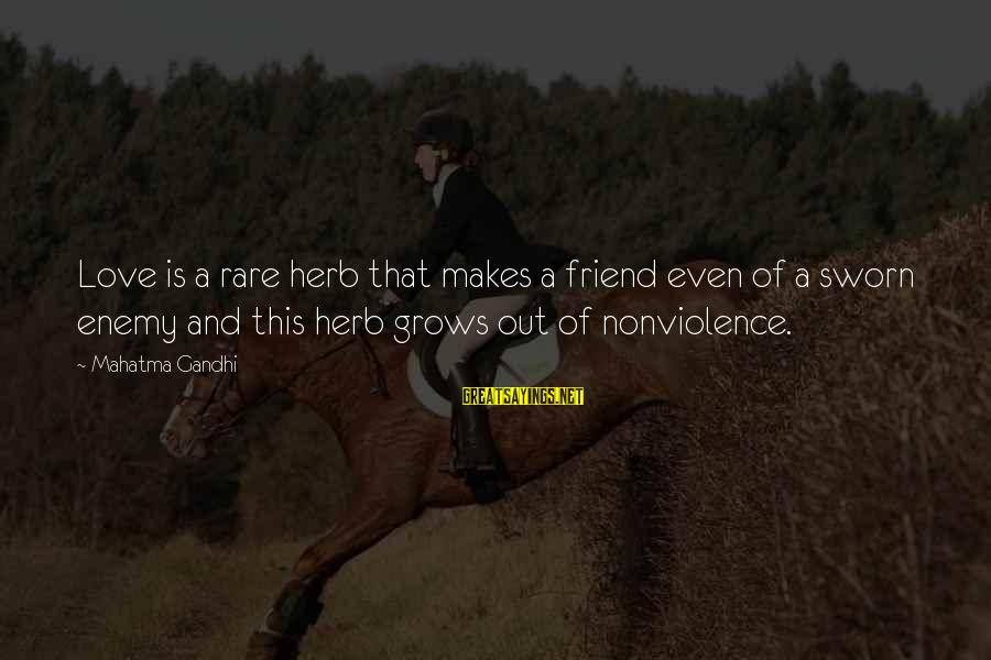 Retail Shrinkage Sayings By Mahatma Gandhi: Love is a rare herb that makes a friend even of a sworn enemy and