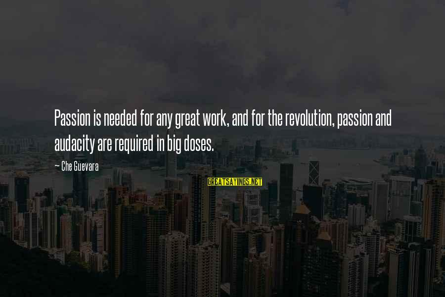 Revolution By Che Sayings By Che Guevara: Passion is needed for any great work, and for the revolution, passion and audacity are