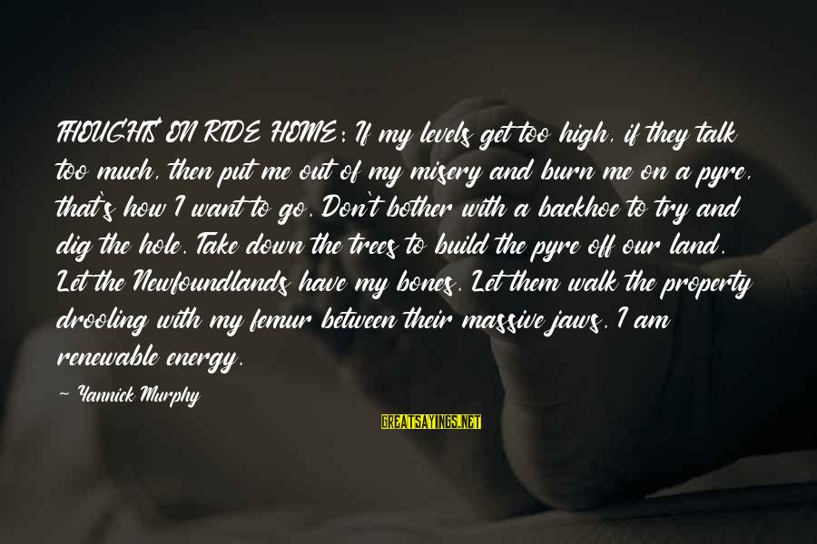 Ride Out Sayings By Yannick Murphy: THOUGHTS ON RIDE HOME: If my levels get too high, if they talk too much,