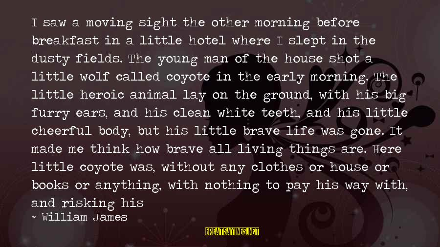 Risking Nothing Sayings By William James: I saw a moving sight the other morning before breakfast in a little hotel where