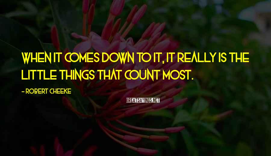 Robert Cheeke Sayings: When it comes down to it, it really is the little things that count most.