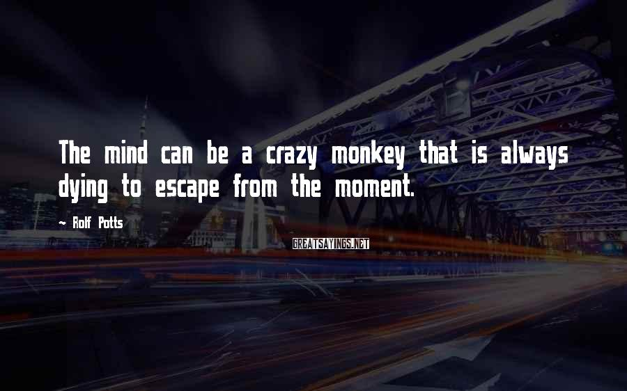 Rolf Potts Sayings: The mind can be a crazy monkey that is always dying to escape from the