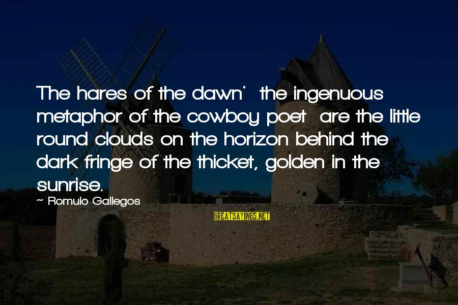 Romulo Sayings By Romulo Gallegos: The hares of the dawn' the ingenuous metaphor of the cowboy poet are the little