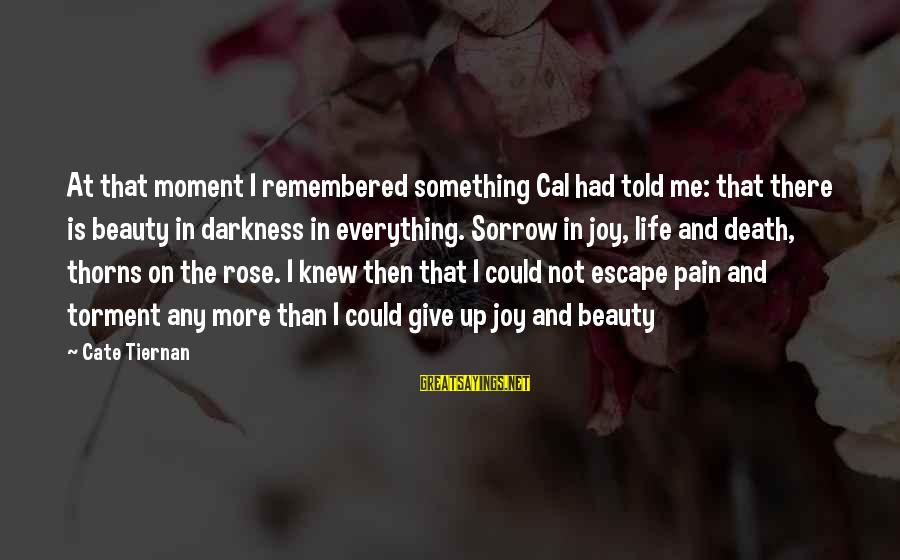Rose And Thorns Sayings By Cate Tiernan: At that moment I remembered something Cal had told me: that there is beauty in