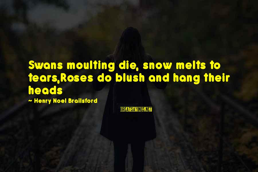 Roses And Death Sayings By Henry Noel Brailsford: Swans moulting die, snow melts to tears,Roses do blush and hang their heads