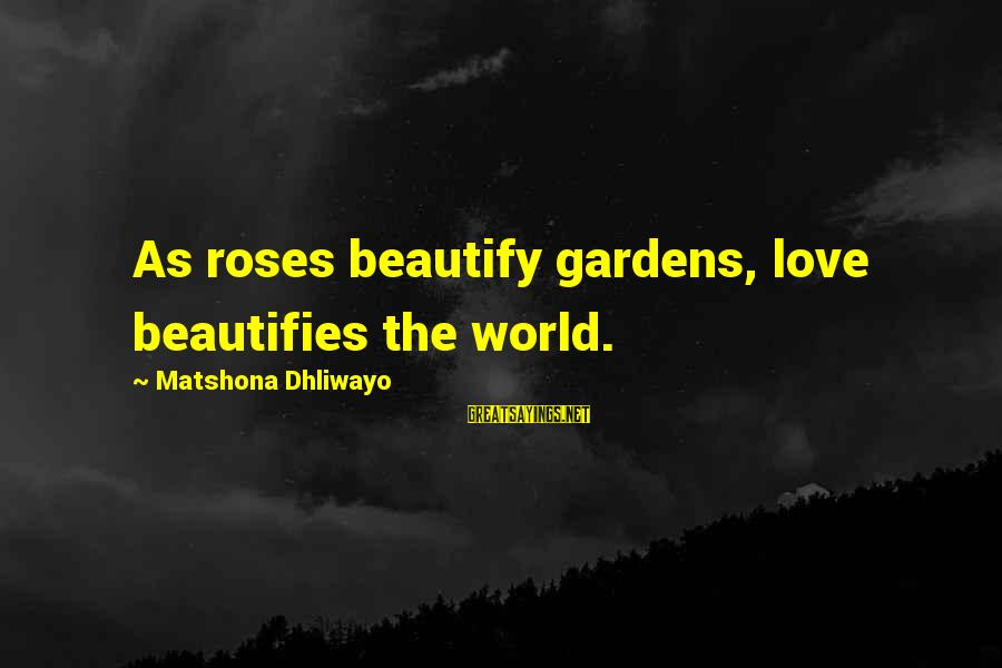 Roses Love Quotes Sayings By Matshona Dhliwayo: As roses beautify gardens, love beautifies the world.