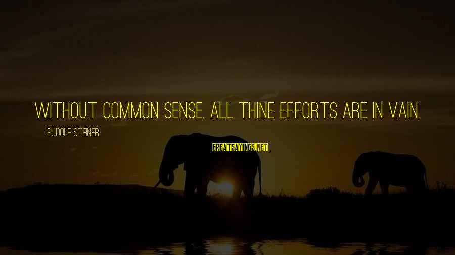 Rudolf Steiner Sayings By Rudolf Steiner: Without common sense, all thine efforts are in vain.