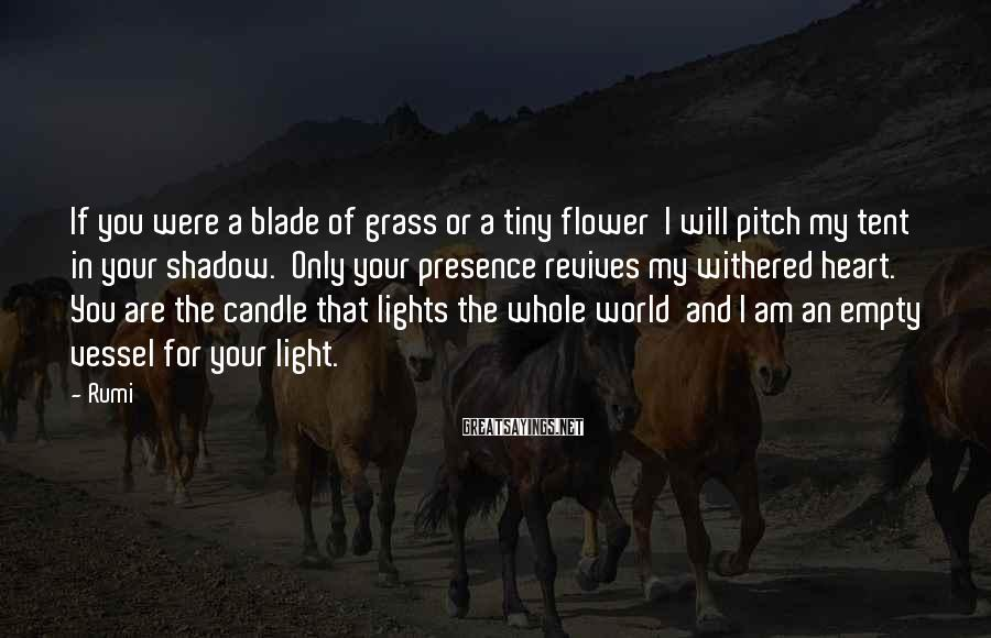 Rumi Sayings: If you were a blade of grass or a tiny flower I will pitch my