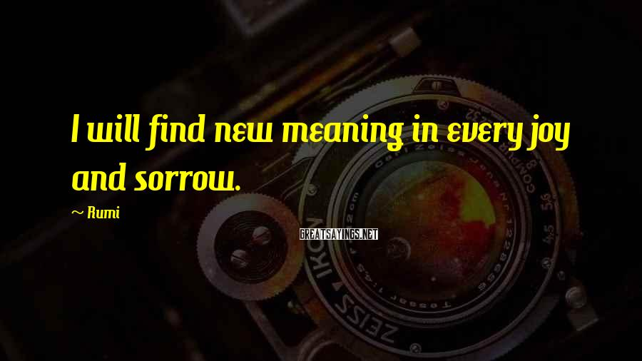 Rumi Sayings: I will find new meaning in every joy and sorrow.