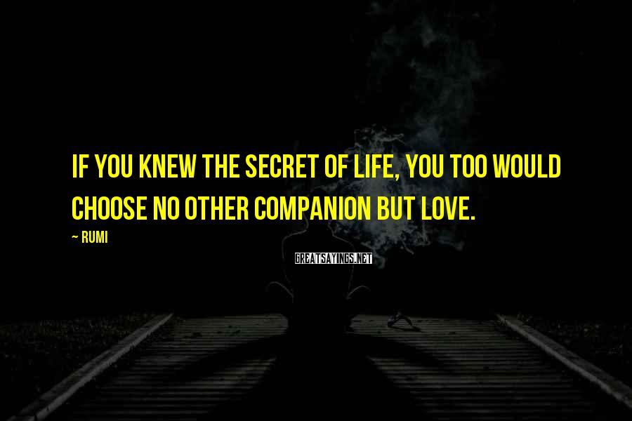 Rumi Sayings: If you knew the secret of life, you too would choose no other companion but