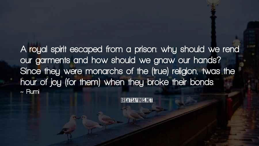 Rumi Sayings: A royal spirit escaped from a prison: why should we rend our garments and how