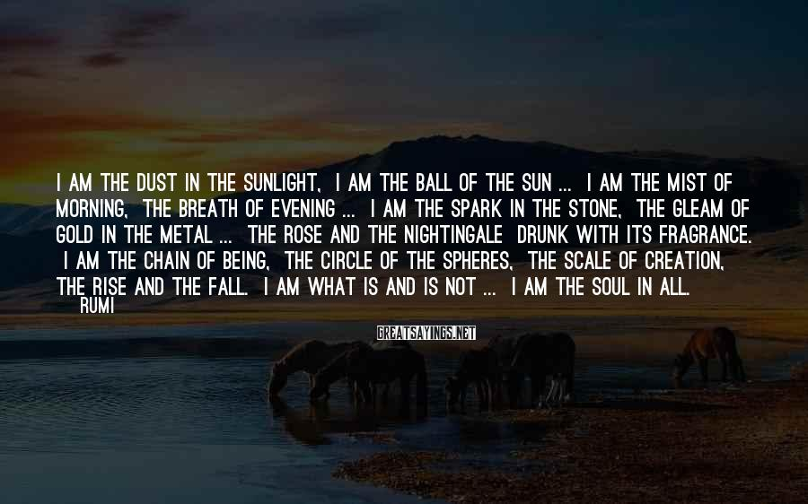 Rumi Sayings: I am the dust in the sunlight, I am the ball of the sun ...