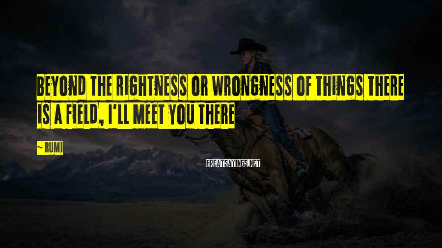 Rumi Sayings: Beyond the rightness or wrongness of things there is a field, I'll meet you there