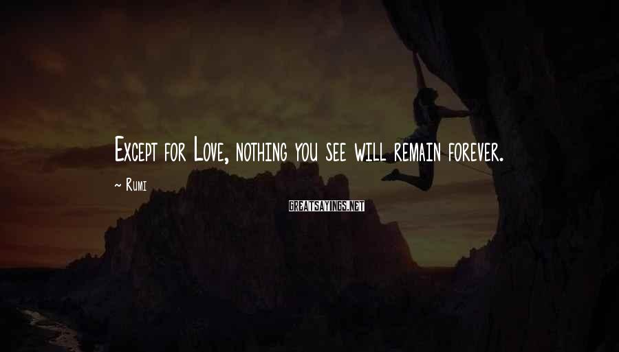 Rumi Sayings: Except for Love, nothing you see will remain forever.